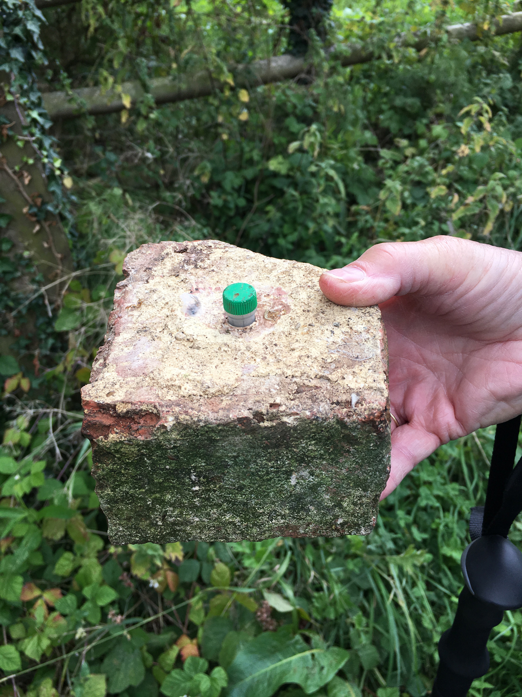 Our 500th Geocache Find