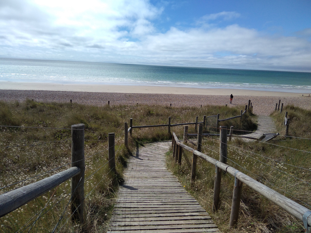 A path over the dunes leading to an emty beach bathed in sunshine