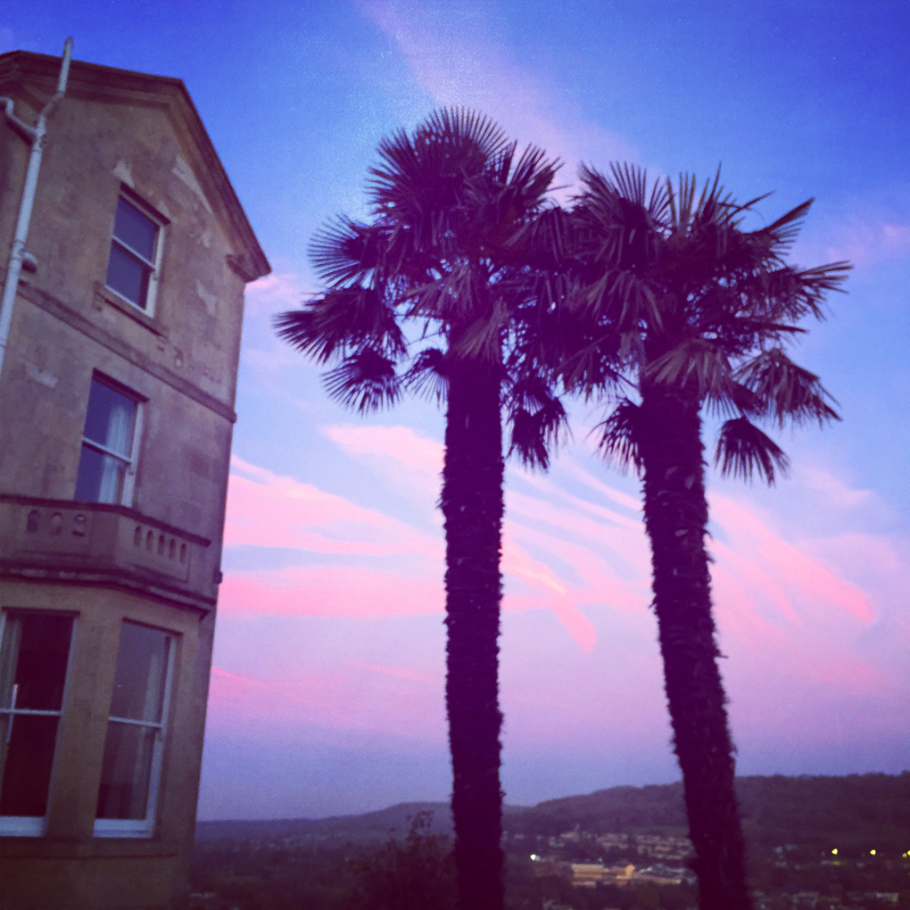 Two palm trees next to a house in Bath, with a colourful sunset