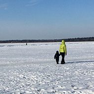 Snowy vista of frozen sea and people walking on it.