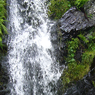 A waterfall in Cardingmill Valley, Church Stretton.