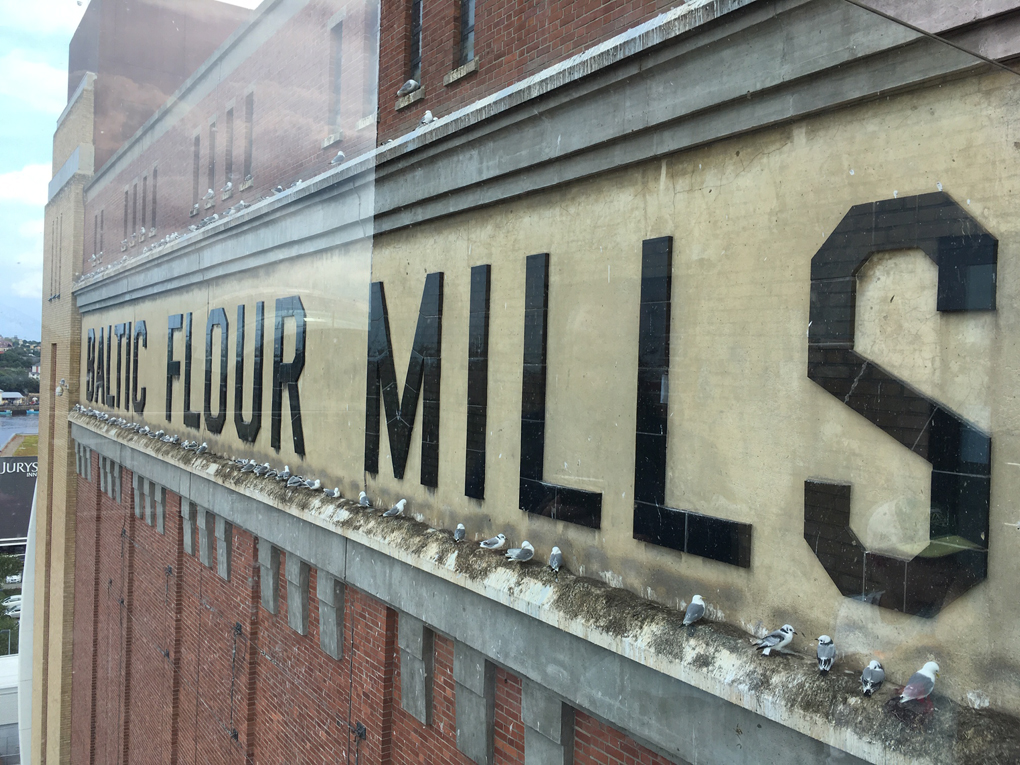 The Baltic Flour Mills turned into an art 'factory'.