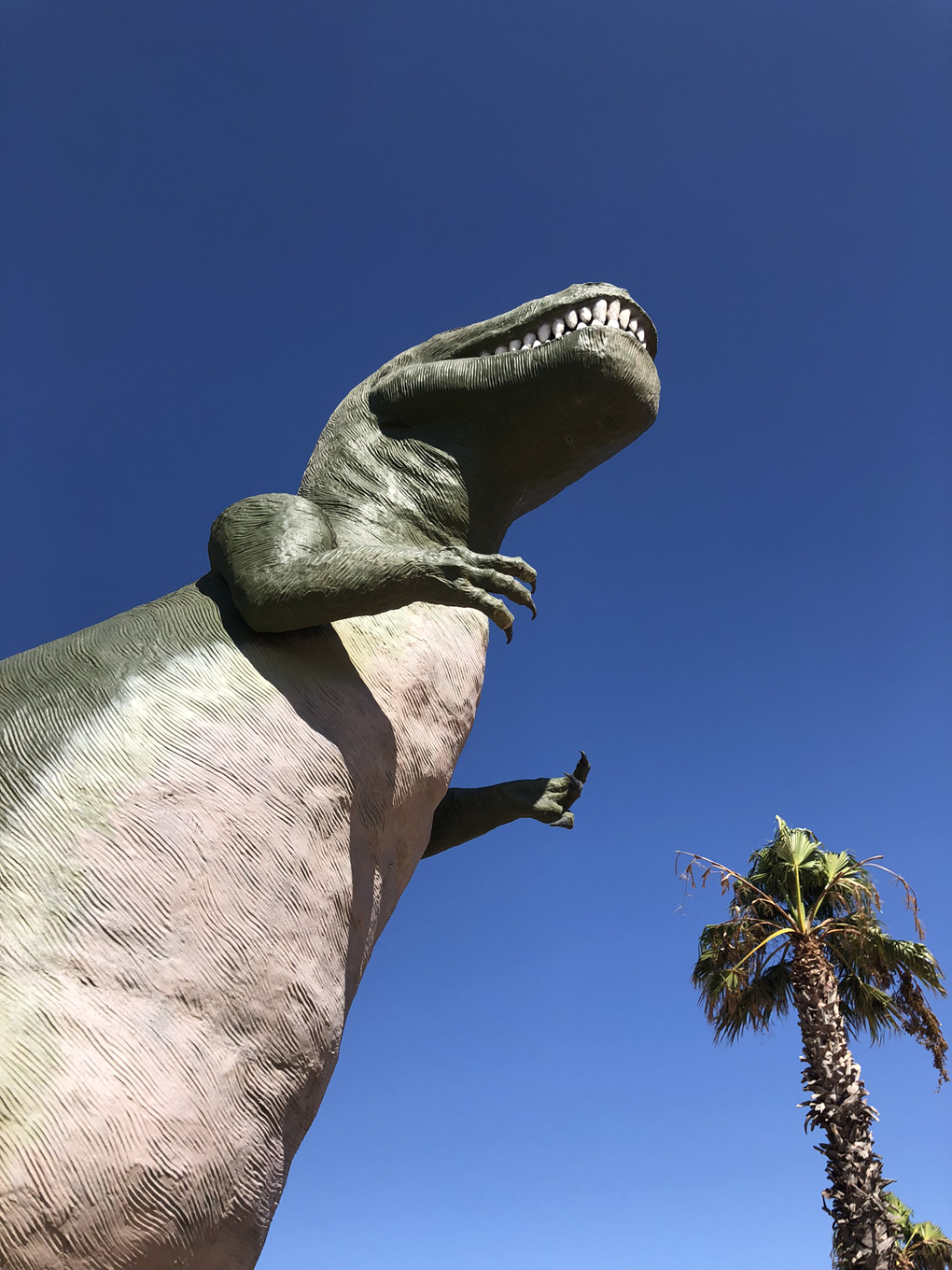 Cabazon dinosaur with blue sky and palm tree