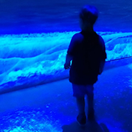 boy standing in blue light looking at a picture of a pyramid