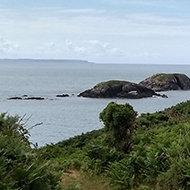 View of Pembrokeshire coastal path towards the sea. Rocks, ferns and distant walkers.