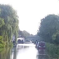 View from underneath bridge of canal, autumn colours, dog in garden next to canal keeping lookout.