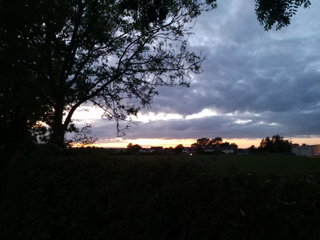 Sunset colours mixed with clouds and the dark outline of a tree