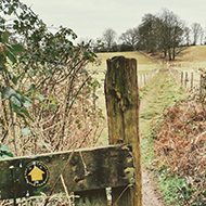 A wooden footpath marker with yellow arrow points the way to a grassy path between two fields stretching into the distance.