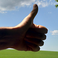 An arm extended with a thumbs up against a backdrop of a clear sky and bright leafy trees
