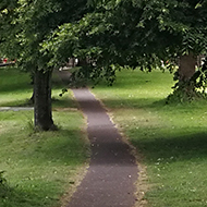 path between two trees